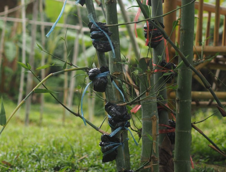 Permaculture bamboo works
